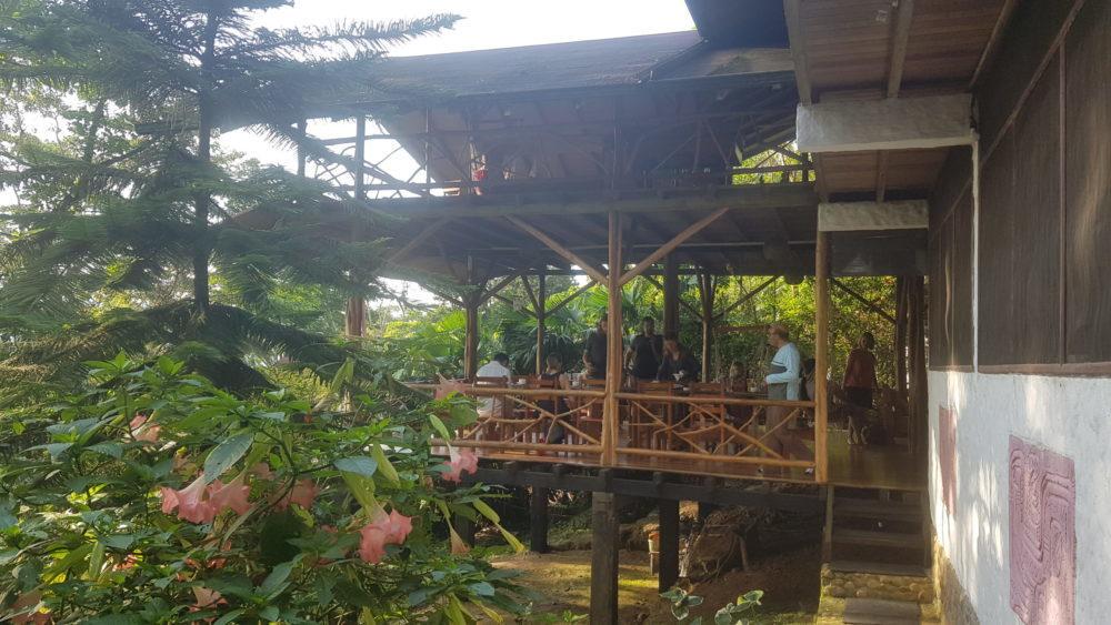 Baumhaus und Lodge